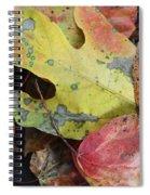 Collective Autumn Color Spiral Notebook