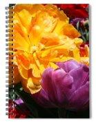 Color Burst 2019 I Spiral Notebook