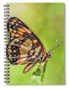 Colorful Butterfly Spiral Notebook