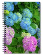 Colorful Hydrangeas Spiral Notebook
