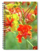 Colorful Morning Spiral Notebook