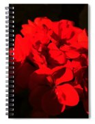 Colors Of The Neighborhood 16 Spiral Notebook