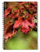 Colours Turning Spiral Notebook