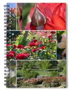 Coming Up Roses Spiral Notebook
