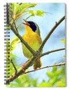 Common Yellowthroat Singing His Little Heart Out Spiral Notebook