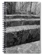 Concrete Forest Spiral Notebook