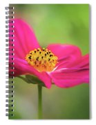 Cosmo Spiral Notebook