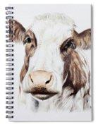 Cow Spiral Notebook