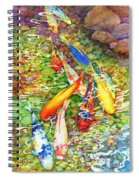 Coy Koi Spiral Notebook
