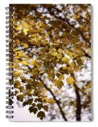 Cozy Fall Day Spiral Notebook
