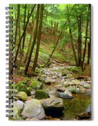 Creek In Massachusetts 2 Spiral Notebook