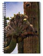 Crested  Spiral Notebook