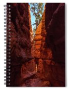 Crimson Crevice Spiral Notebook