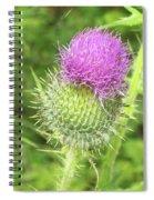 Crown Thistle Spiral Notebook