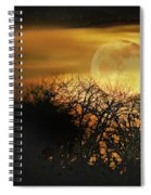 Crows Nest Full Moon Spiral Notebook