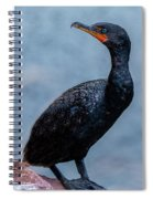 Curious Cormorant Spiral Notebook