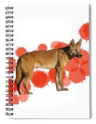 D Is For Dingo Spiral Notebook