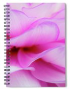 Dahlia 3 Spiral Notebook