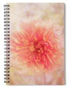 Dahlia Light Spiral Notebook