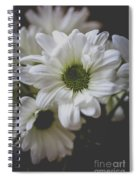 Daisey Flowers 0981 Spiral Notebook