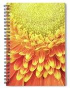 Daisy Day Spiral Notebook