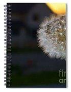 Dandelion Spiral Notebook