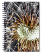 Dandelion Seed Pod Spiral Notebook