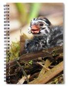 Dapper Dive-dapper Spiral Notebook