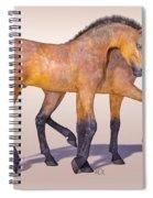 Darling Foal Pair Spiral Notebook