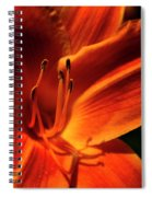 Day Lily Delight Spiral Notebook
