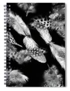 Decorated In Black And White Spiral Notebook