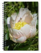 Delicate Pastel Peach Cupped Peony Blossom Spiral Notebook