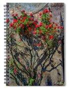 della Rocca Rose Spiral Notebook