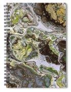 Desert Arroyo 2 Spiral Notebook