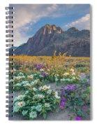 Desert Sand Verbena, Desert Sunflower Spiral Notebook