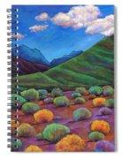 Desert Valley Spiral Notebook