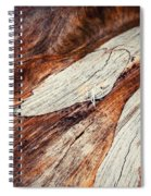 Detail Of Abstract Shape On Old Wood Spiral Notebook