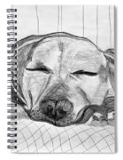 Django Napping Spiral Notebook