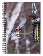 Docking Bluebird Spiral Notebook