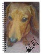 Doggone Spiral Notebook