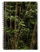 Dogwood Tree 2 Spiral Notebook