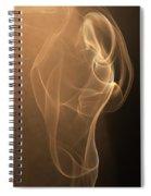 Donna Che Aleggia Misteriosa Spiral Notebook
