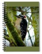 Don't Move Bird Spiral Notebook