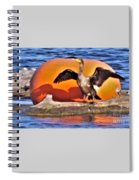 Double Crested Cormorant    Drying Wings         September        Indiana Spiral Notebook