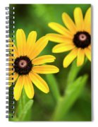 Double Daisies Spiral Notebook