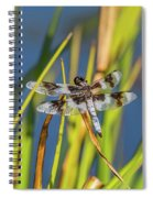 Dragonfly Perched By Pond Spiral Notebook