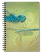 Dragons Fly Spiral Notebook