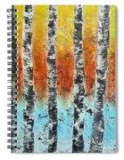 Dreamside1 Spiral Notebook