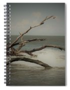 Drifting Along With The Tide Spiral Notebook