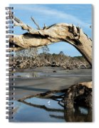 Driftwood Beach Spiral Notebook